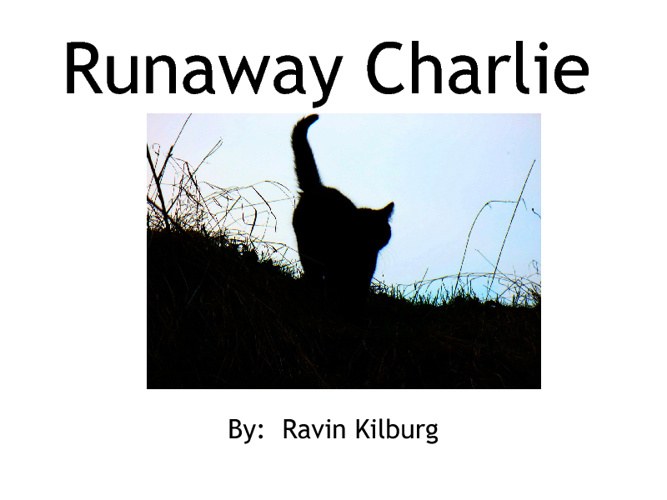 Runaway Charlie