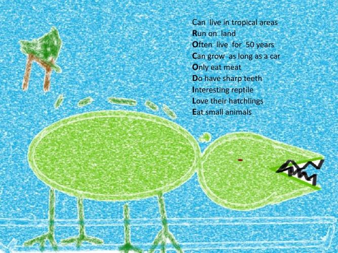 Reptile Poems