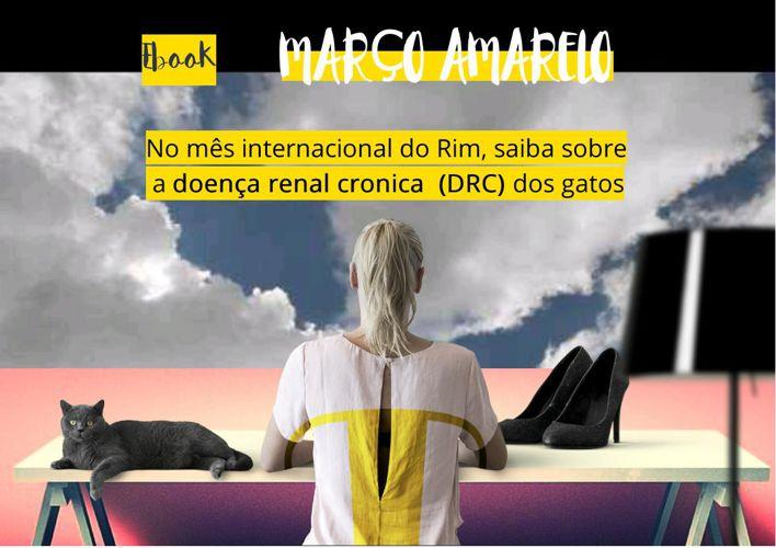 Março amarelo - DRC em gatos