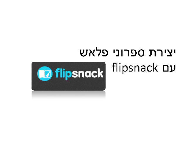 New Flip 33miki