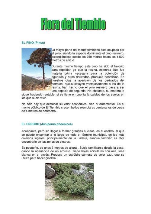 Flora de El Tiemblo