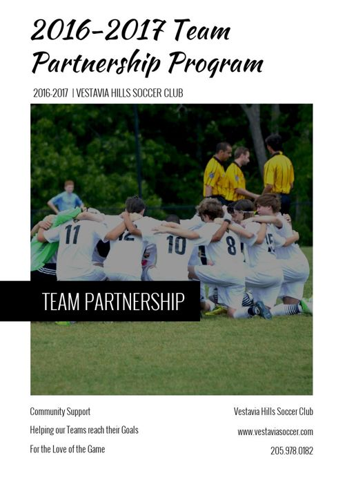 2016-2017 VHSC Team Partnership Program