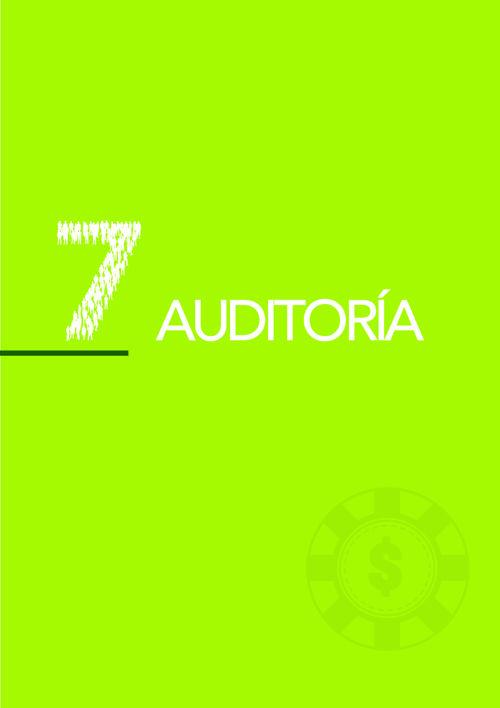7. AUDITORIA
