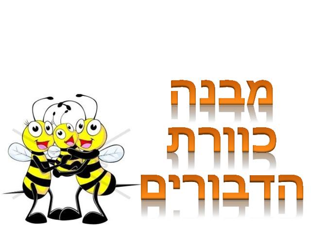 מבנה כוורת הדבורים