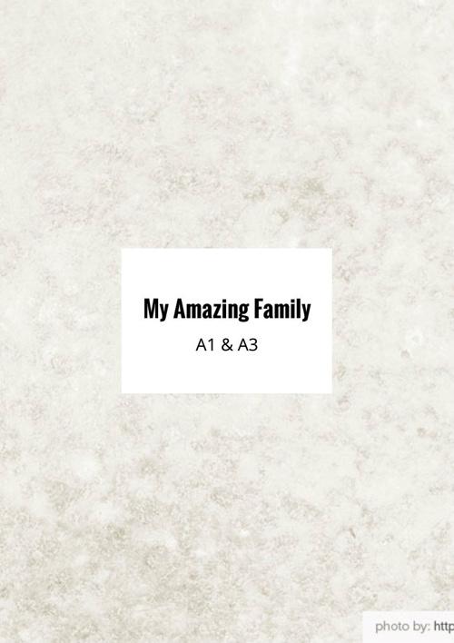 My Amazing Family