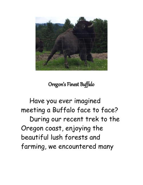 Oregon's Finest Buffalo