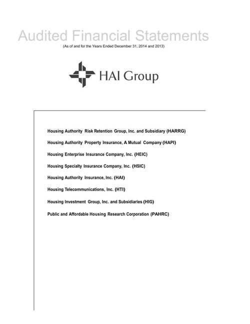 HAI Group Audited Financials 2014