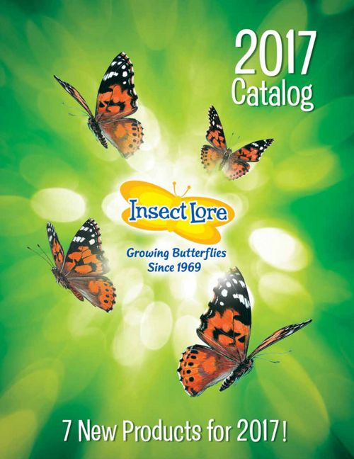 2017 Insect Lore Catalog