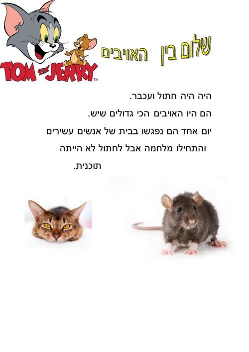 טום וג'רי ספר חדש