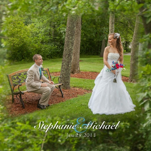 Stephanie and Michael's Album