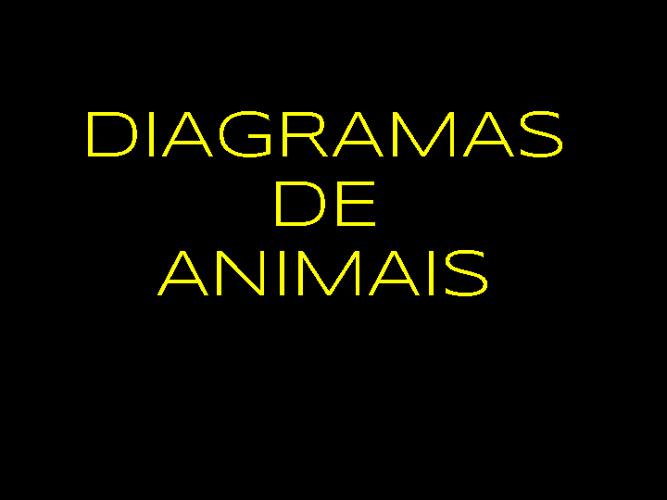 ORIGAMI ANIMAIS
