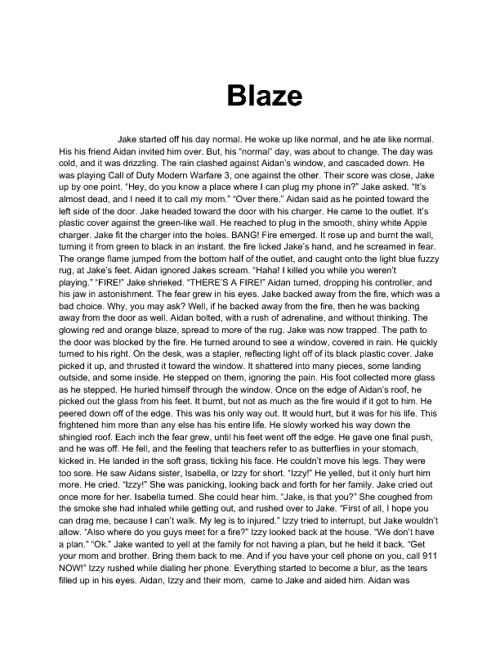 Devin's 6th Grade Writing :)