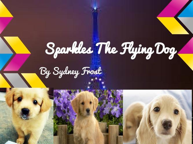 Sparkles The Flying Dog