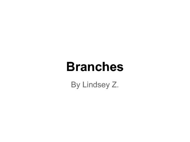 lindsey's memoir branches