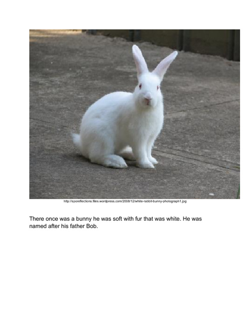 The Bunny Who Lost His Carrots.