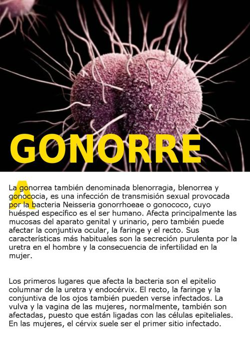 infectologia 1