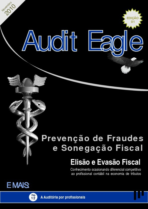 Audit Eagle