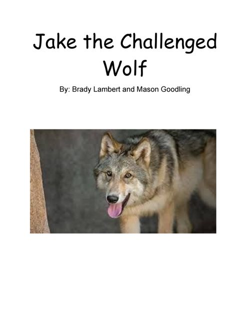 Jake The Challenged Wolf
