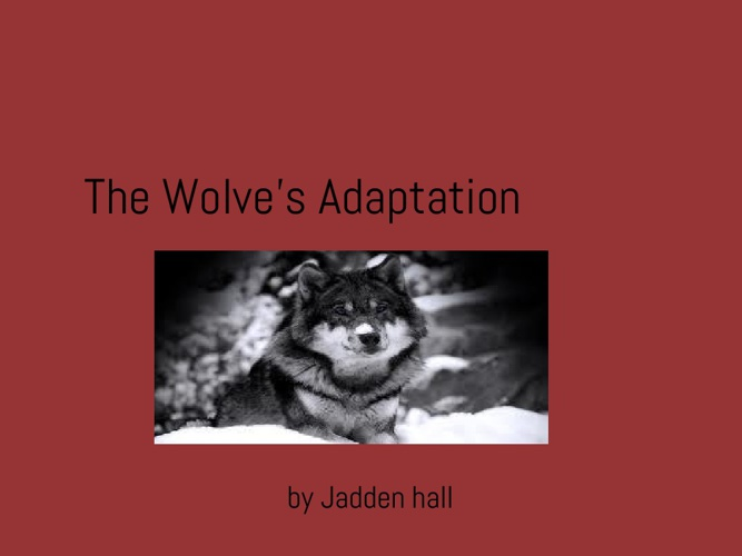 The Wolves Adaptations