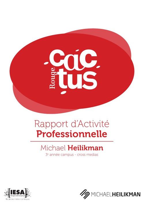 rapport de stage 2013
