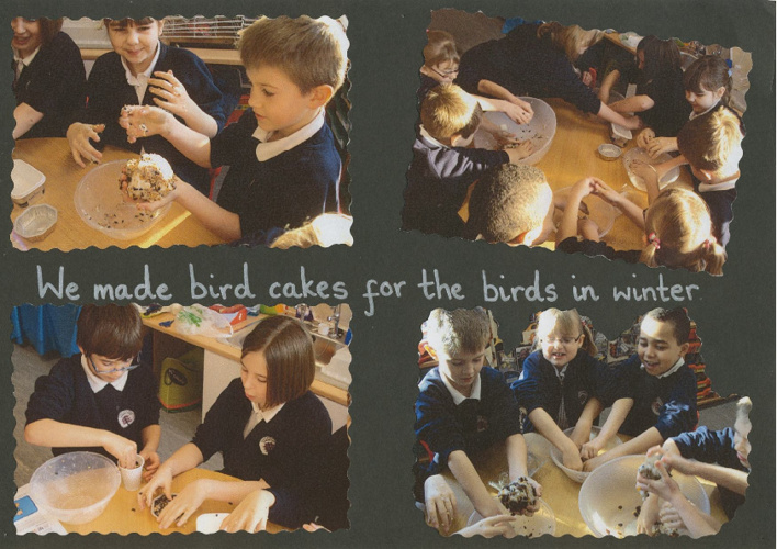 Copy of Birds from England 2.