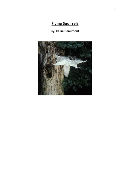 Flying Squirrels By: Kellie Beaumont