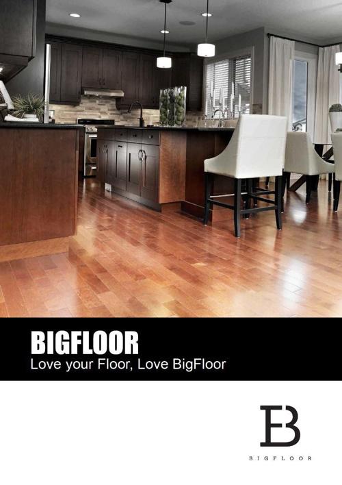 Big Floor Company Profile