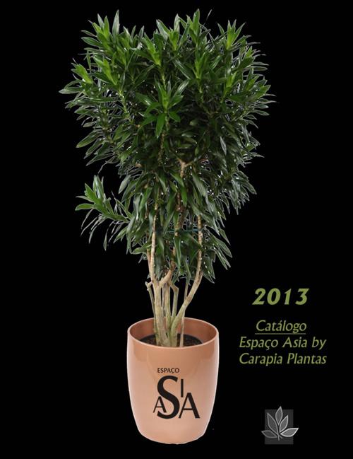 Espaço Asia by Plantas Carapia