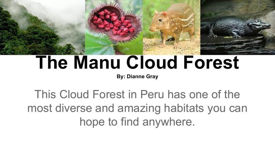 The Manu Cloud Forest