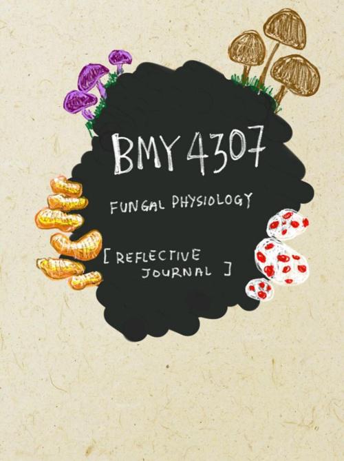 REFLECTIVE JOURNAL BMY4307