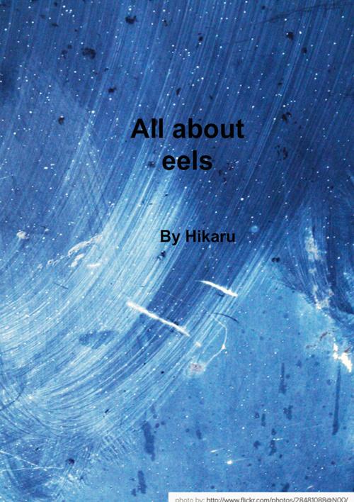 HikaruUribesNonFictionBook