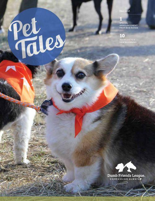 2017-PetTales-Fall