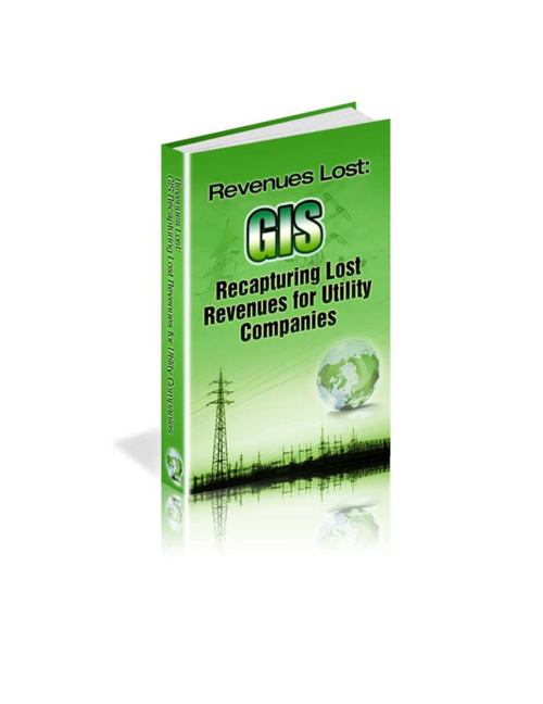 Electric Utility Line Loss - eBook