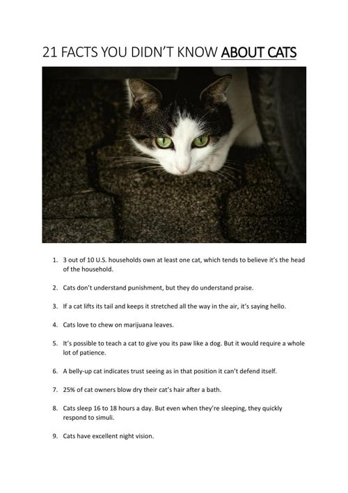 21 Facts You Didn't Know About Cats