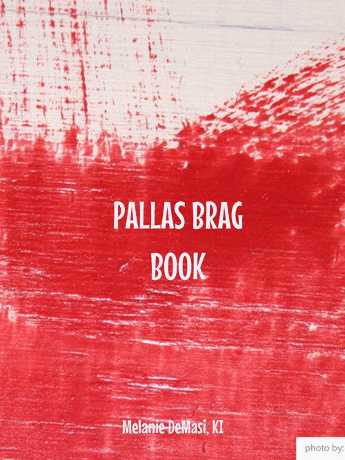Copy of Copy of PALLAS BAGS