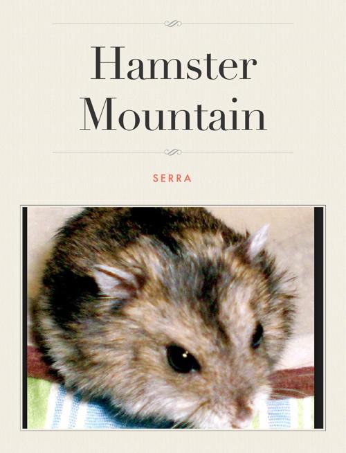 Hamster mountain SERRA