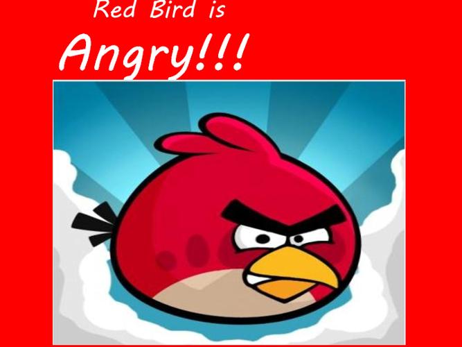 Boomerang Bird - Ben Raidme