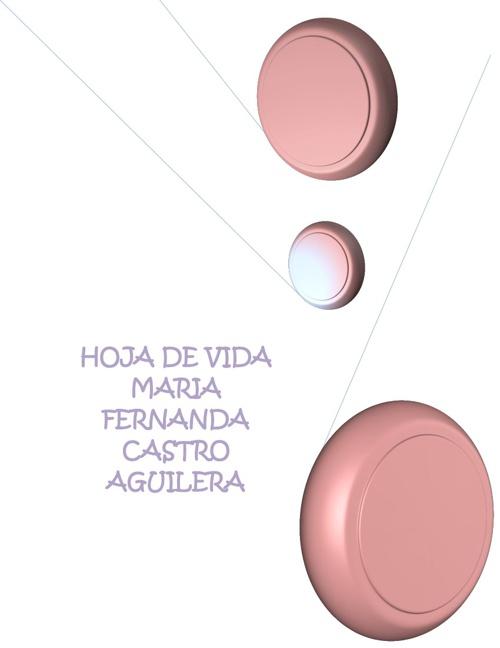 HOJA DE VIDA MAFE CASTRO