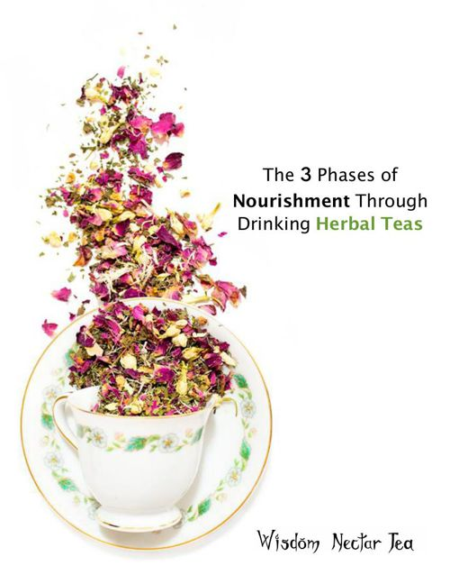 The 3 phases of Nourishment Through Drinking Herbal Teas