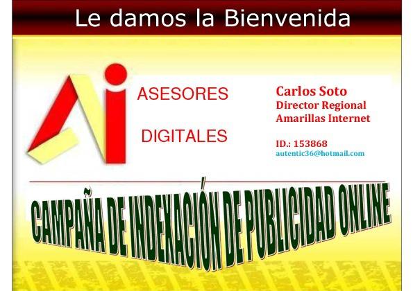 Asesores De  Publicidad Digital