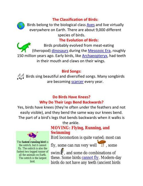 The Classification of Birds3v