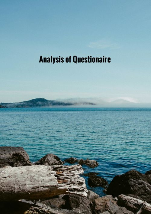 Analysis of Questionaire Results