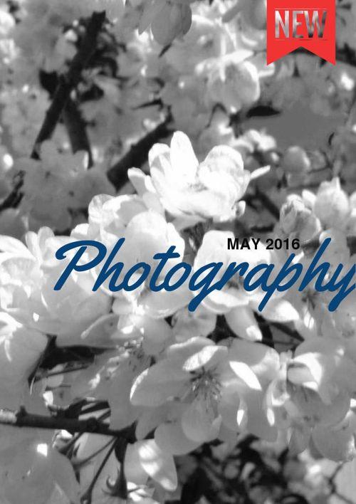 Alison Spears - Digital Photography Portfolio