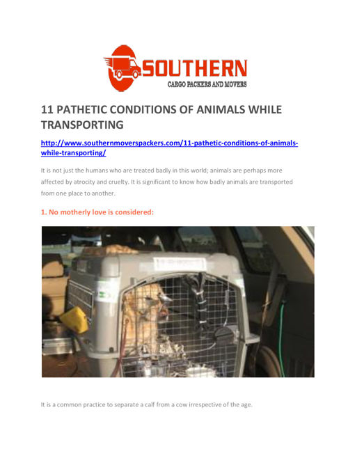 11 PATHETIC CONDITIONS OF ANIMALS WHILE TRANSPORTING
