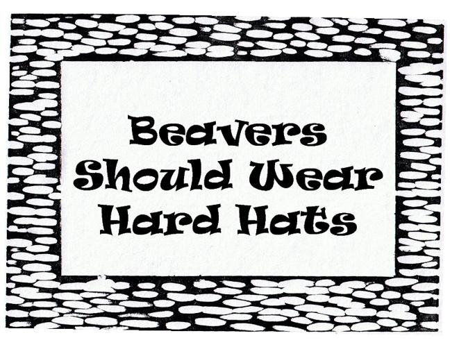 Beavers Should Wear Hard Hats