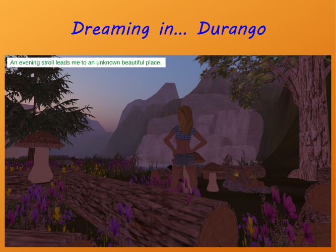 Durango Dream
