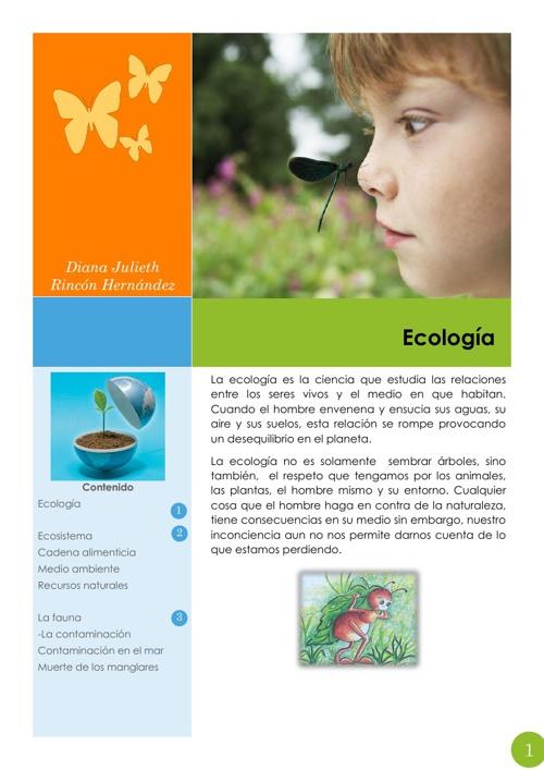 """ECOLOGIA """"HACIA UNA EDUCACION AMBIENTAL"""""""