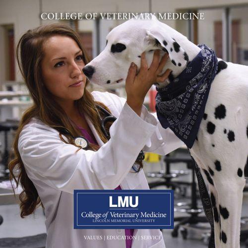 LMU-CVM Student Brochure