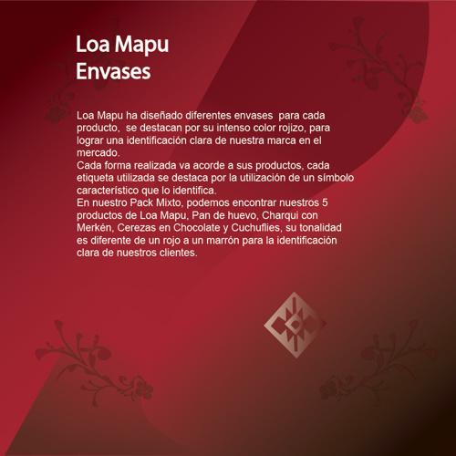 Nuevo Manual Loa Mapu part2