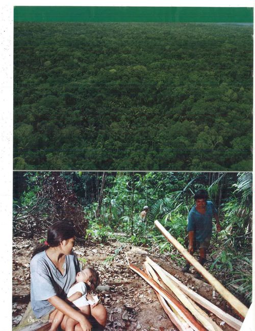 Land Use Conflict in the Amazon